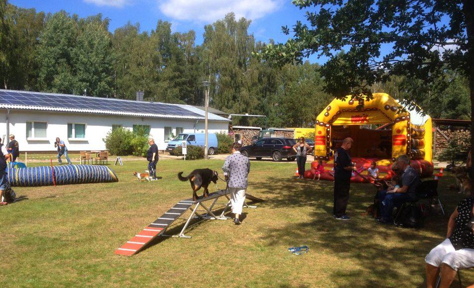 Sommerfest und Tag der offenen Tür im Tierheim Ladeburg