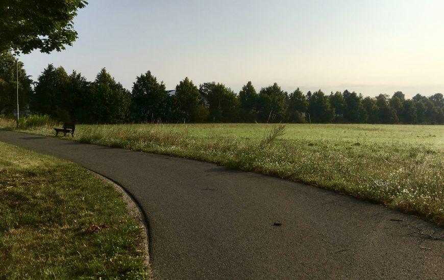 Ladeburger irritiert über neue Baupläne auf Ackerflächen